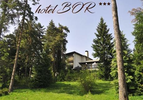 Нощувка със закуска в хотел Бор, Боровец