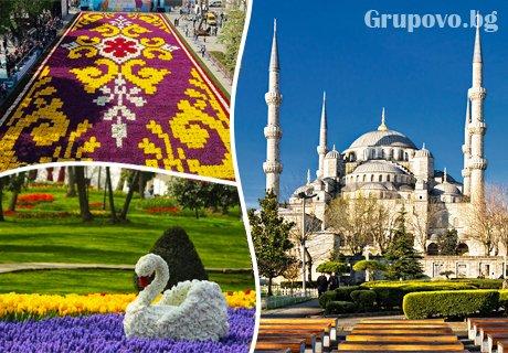 Фестивала на лалето в Истанбул, Турция! Транспорт, 2 нощувки със закуски и посещение на Одрин от Караджъ Турс. Тръгване всеки четвъртък