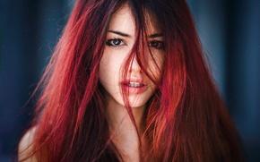 Боядисване на цяла коса + подстригване + сешоар само за 33лв. от Siyana Beauty House, София